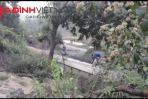 Thâm nhập 'đại công trường' tuồn than quy mô 'khủng' ở Quảng Ninh