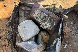 Dọn vườn, bất ngờ tìm thấy két chứa hơn 1 tỷ đồng tiền mặt, vô số vàng và kim cương