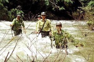 Kiểm lâm Bắc Giang 45 năm nỗ lực bảo vệ rừng