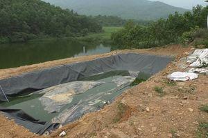 Quỹ hỗ trợ phát triển HTX Quảng Nam cho vay trang trại nuôi heo 'chui', khả năng mất vốn lớn