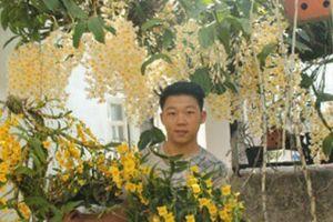 Trai phố núi làm giàu nhờ đam mê phong lan từ thuở lên 7