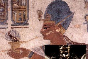 Sự thật ngỡ ngàng về xác ướp pharaoh Ai Cập Ramesses III