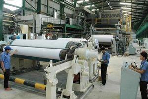 Tập đoàn Tân Mai dựng chiến lược dài hạn 'đánh chiếm' thị phần giấy