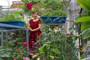 Ngưỡng mộ bà mẹ Hà thành trồng rau, nuôi chim gà trên sân thượng