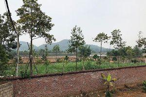 Thứ trưởng Tài nguyên gom đất nông lâm trường do... 'ở quê khó khăn'