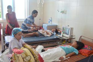 Liên hoan trà sữa và rau câu, hàng loạt học sinh nhập viện