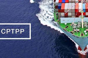 CPTPP có hiệu lực vào đầu năm 2019?
