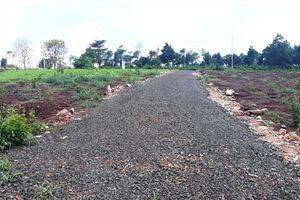 Gia Lai: Phát hiện thêm khu vực đất mở rộng trường Đại học bị phân lô, bán nền trái phép