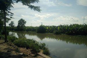 Nghi vấn xuất hiện cá sấu với kích cỡ 'khủng' trên kênh Hòa Bình
