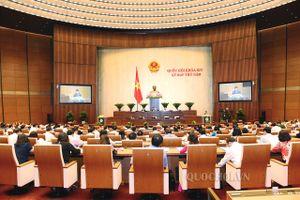 Ngày 24/5, Quốc hội sẽ bàn về dự thảo Luật Tố cáo và Luật Cạnh tranh sửa đổi