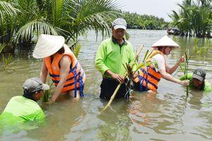 Quảng Nam: Đẩy mạnh phát triển du lịch sinh thái