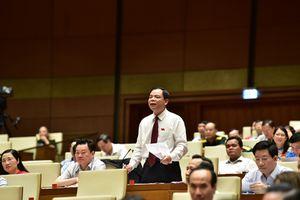 Chính sách phát triển nông nghiệp đang được Chính phủ tập trung hoàn thiện