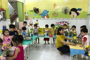 TP.HCM: Quận Tân Bình công bố kế hoạch tuyển sinh đầu cấp