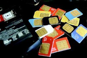 Vinaphone, Viettel và Mobifone sẽ bắt đầu chuyển thuê bao 11 số sang 10 số từ 15/9