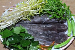 Món ăn thuốc từ cá ngát