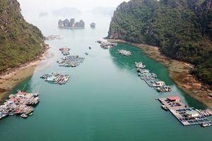 Quảng Ninh, Hải Phòng phủ nhận chuyện 'ngăn sông cấm chợ' trên vịnh Hạ Long