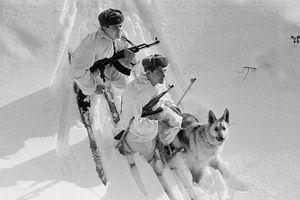 Những hình ảnh ít người biết về lính biên phòng Liên Xô
