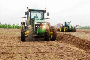 Thái Bình: Tích tụ gần 15.000 ha đất nông nghiệp