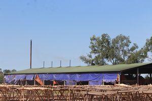 Hà Tĩnh: Dân 'tố' nhà máy chế biến gỗ gây ô nhiễm môi trường