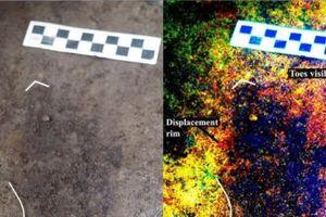 Tìm thấy 29 dấu chân của người cổ đại 13.000 năm tuổi tại Canada