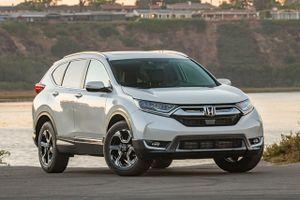 Top 10 xe SUV và crossover địa hình tốt nhất trên thị trường