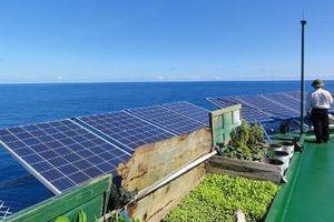 Bình Thuận sắp có nhà máy điện mặt trời với công suất 39 MWac