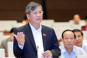 Rồi đây Vân Đồn, Bắc Vân Phong và Phú Quốc phát triển đến mức nào?