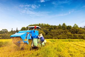 Bayer hoàn tất giao dịch mua lại Monsanto