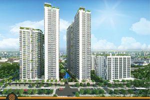 Nhiều dự án bất động sản tại TPHCM thế chấp tại ngân hàng