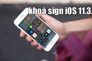 iPhone 5s trở lên sẽ không thể hạ cấp về iOS 11.3.1 từ hôm nay