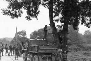 Sự cố Mỹ và Triều Tiên từng suýt lâm chiến vì... một cái cây