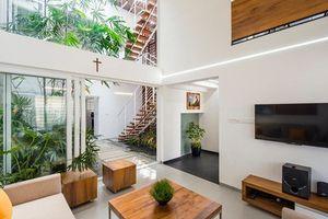 Ngôi nhà 3 tầng rợp bóng cây nhờ có giếng trời