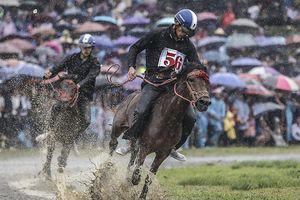 Thử thách lòng gan dạ, tranh tài ở Giải đua ngựa Bắc Hà 2018