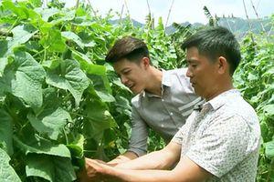 Đẩy mạnh kết nối nông sản giữa các tỉnh với Hà Nội