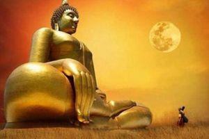 14 câu nói của Đức Phật giúp bạn tìm được hướng đi của cuộc đời