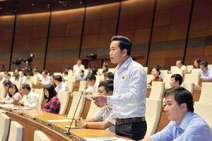 Đại biểu Quốc hội Dương Tấn Quân: Cần quy định rõ trách nhiệm bảo vệ môi trường trong chăn nuôi