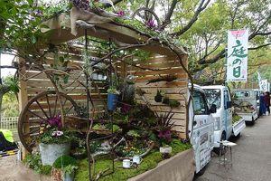 Ảnh Nhật Bản: Cả khu vườn bỗng chốc thu bé lại, vừa thùng xe tải mini