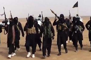 Phiến quân IS 'chết như ngả rạ' trên chiến trường Đông Nam Syria