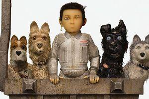 'Đảo của những chú chó': Phim dành cho người yêu thích cún và thể loại hoạt hình stop motion