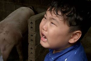 Cười chảy nước mắt với Bi Béo nhà Xuân Bắc đòi bình đẳng giới