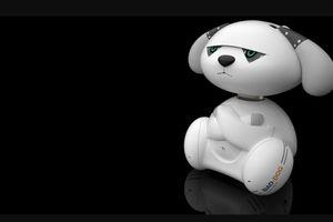 Nhiều người trẻ châu Á làm bạn với robot do quá cô đơn