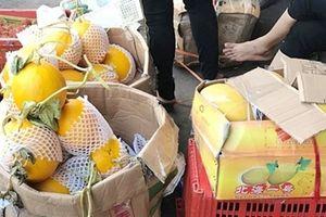 Dưa lưới, dưa vàng Trung Quốc gắn mác hàng Việt Nam đổ bộ các chợ đầu mối