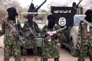 Bé gái bị bắt làm 'bom sống' khiến 31 người chết ở Nigeria