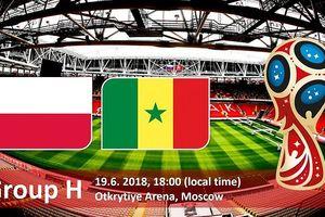 Dự đoán kết quả tỉ số trận Ba Lan vs Senegal hôm nay của 'nhà tiên tri' mèo Cass