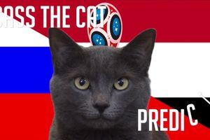 Dự đoán WC 2018 kết quả tỉ số trận Nga vs Ai Cập của mèo Cass