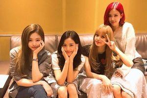 YG 'bỏ bê' BlackPink, netizen xôn xao: Công ty nên có thêm nhạc sĩ, sao cứ mãi dựa vào Teddy vậy?
