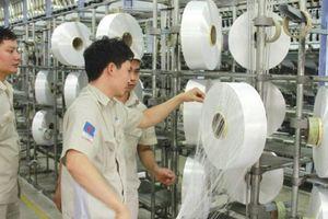 PVTEX bắt đầu có lãi từ bán sợi