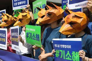 Tòa án Hàn Quốc ra phán quyết 'lịch sử': giết chó lấy thịt là phi pháp