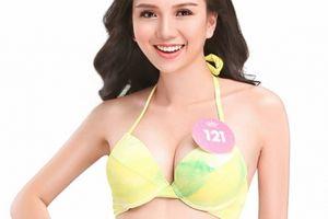Chi tiết số đo 3 vòng của thí sinh Hoa hậu Việt Nam