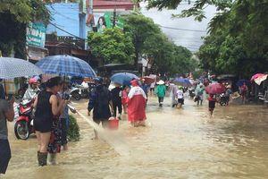 Lũ quét kinh hoàng ở Hà Giang, dân bất chấp nguy hiểm quăng chài bắt cá giữa quốc lộ